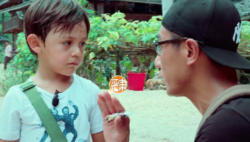 刘烨分享教育经验 墙角训话是给面儿