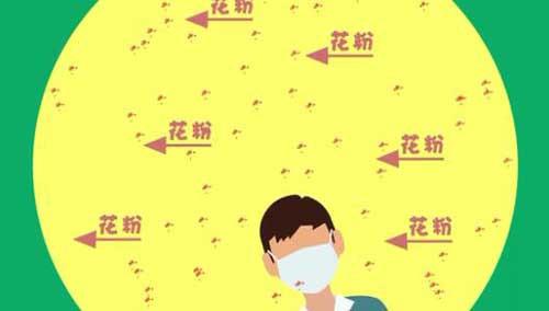 【脑洞挖掘机第一季】漫天疯狂的花粉