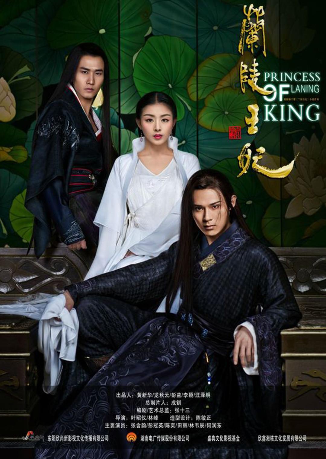 兰陵王妃DVD版